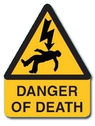 SES Danger of Death with Voltage Symbol Label